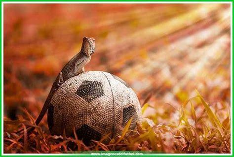 El Mejor Fondo de Pantalla Equipos de Futbol | Imagenes ...