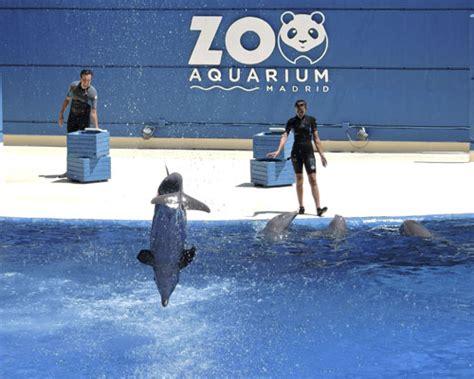 El mejor plan para Semana Santa en Zoo Madrid | Zoo ...