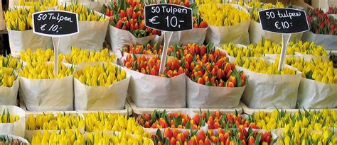 El mercado de flores de Ámsterdam   VisitandoEuropa