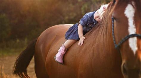 El miedo y la violencia: Sanación con los caballos ...