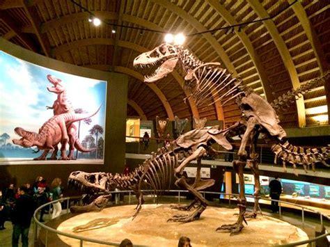 El Museo Jurasico de Asturias | Visitas/planes pendientes ...