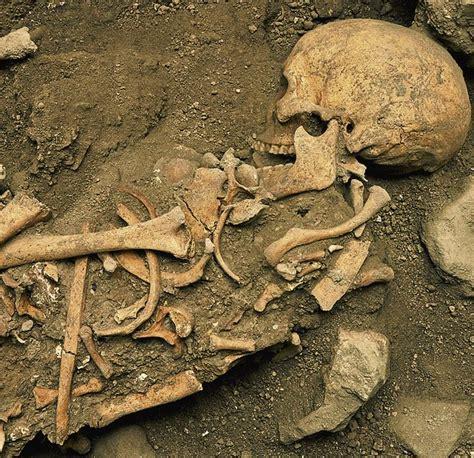 El neolítico marcó el ADN - Historia y Genealogía ...