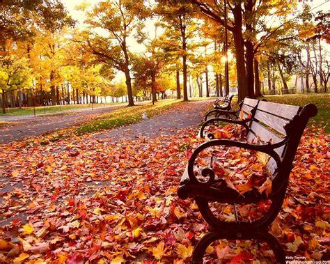 El otoño y todo lo bueno que trae - Blog Familiar de Babyradio