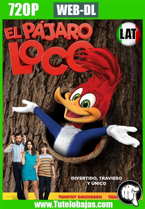 El Pajaro Loco En Espanol Latino - Chungcuso3luongyen