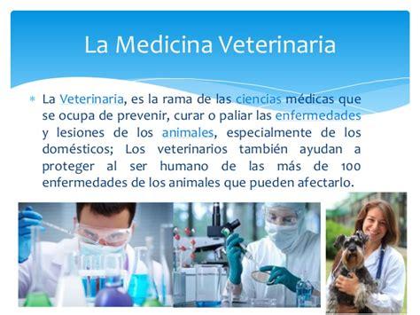 El papel del medico veterinario en la sociedad