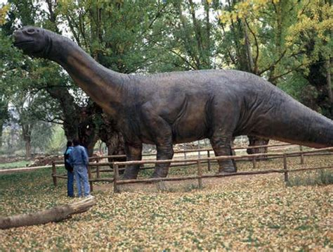 El primer dinosaurio hallado en Teruel rejuvenece