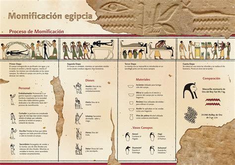 El proceso de momificación de los egipcios #infografia # ...