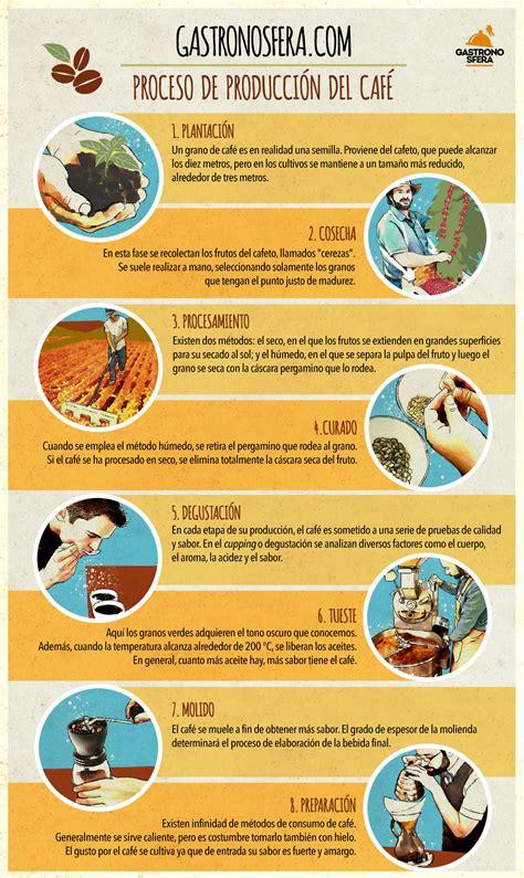 El proceso de producción del café en 8 pasos | Gastronosfera