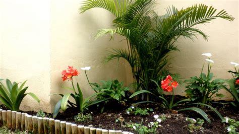 El Reino Plantae: Plantas un jardin pequeño
