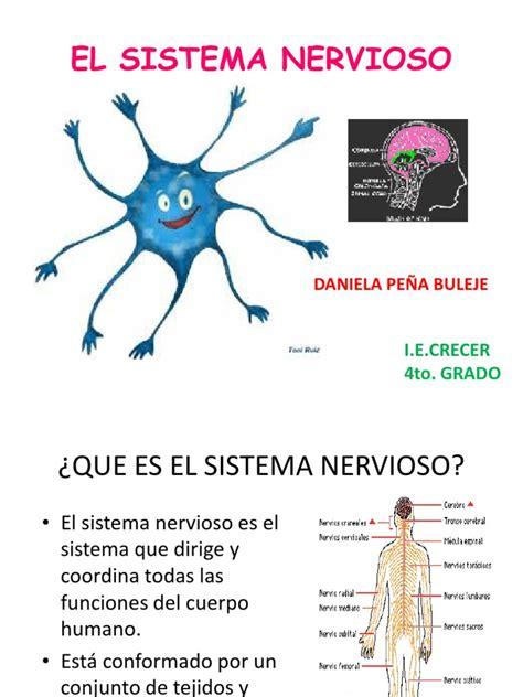 El Sistema Nervioso Primaria