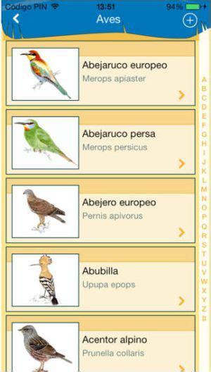 El 'kit' del ornitólogo   El Viajero   EL PAÍS
