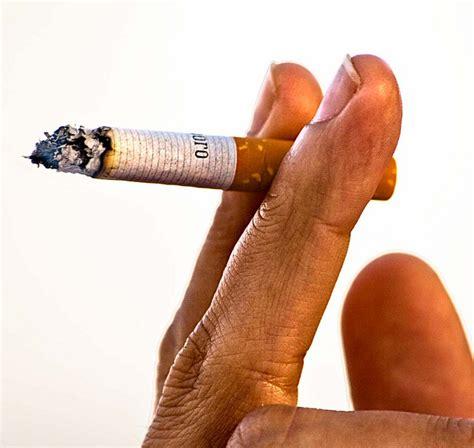 El tabaco de liar supera los niveles de nicotina ...