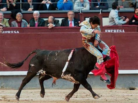 El torero peruano Andrés Roca Rey sufrió una dura cornada ...