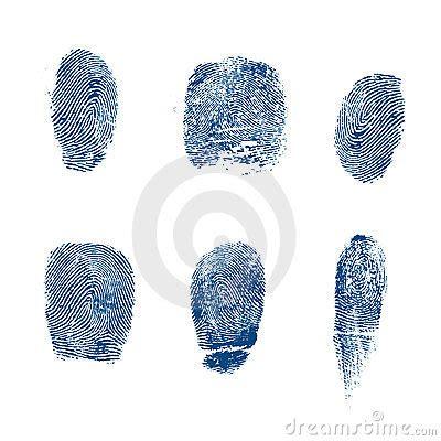 El Vector Toma Las Huellas Dactilares Policía Fotos de ...