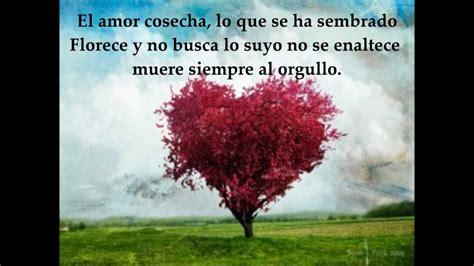 El verdadero amor espera - Pescao vivo Letra/Lyrics - YouTube