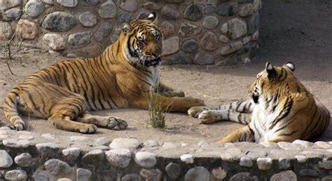 El Zoo de Córdoba enamora a grandes y chicos