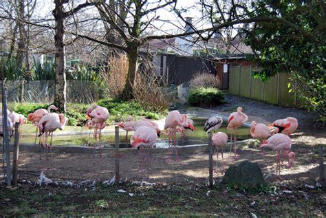 El Zoo de Londres, un lugar accesible para todos ...