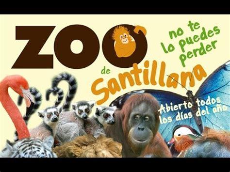EL ZOO DE SANTILLANA DEL MAR CANTABRIA   YouTube