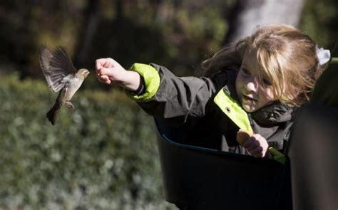 El 'zoo' oculto del Retiro | Madrid | EL MUNDO