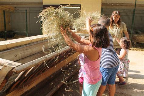 El Zoo prepara más actividades por Semana Santa | Cap de ...