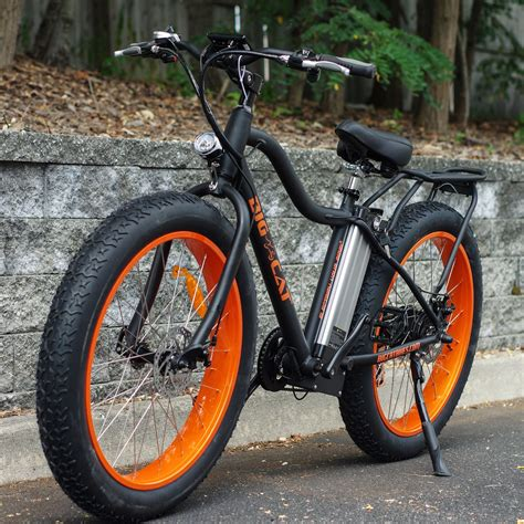 Electric Fat Cat X Mountain Bike | Bikes | Pinterest ...