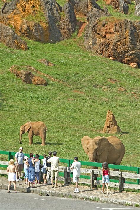 Elefante - Parque de la Naturaleza de Cabárceno - Cantur ...