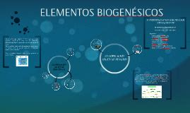 ELEMENTOS BIOGENÉSICOS by Alondra Montoya on Prezi