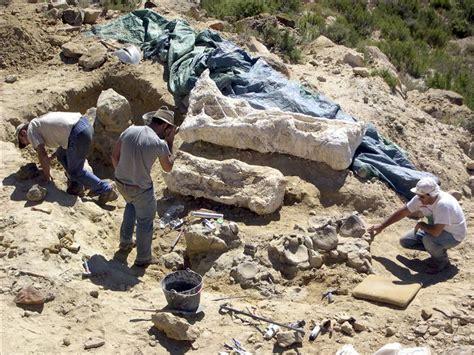 En Argentina descubren uno de los mayores dinosaurios del ...