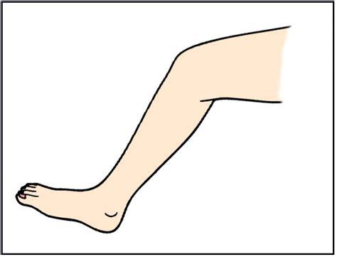 En inglés: pierna.