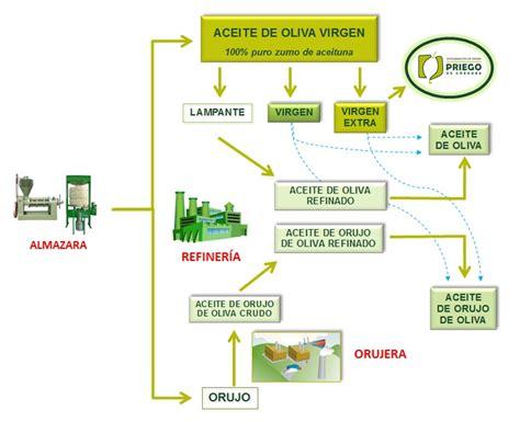 ¿En qué se diferencian un aceite de oliva, un aceite de ...