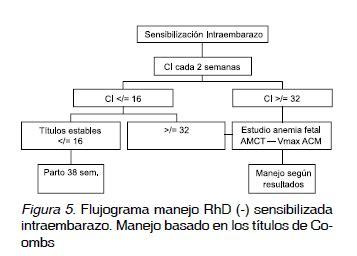 Enfermedad hemolítica perinatal: manejo de la embarazada ...