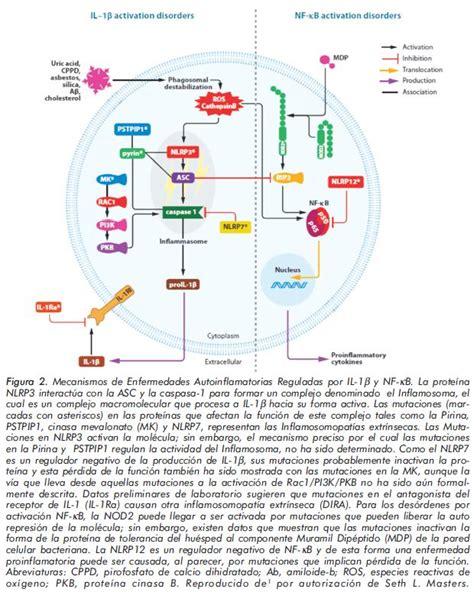Enfermedades Autoinflamatorias