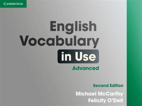 English Vocabulary in Use: Mi Opinión y Experiencia
