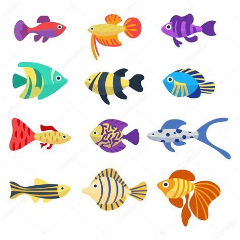 Ensemble des poissons d aquarium. Couleurs des poissons ...