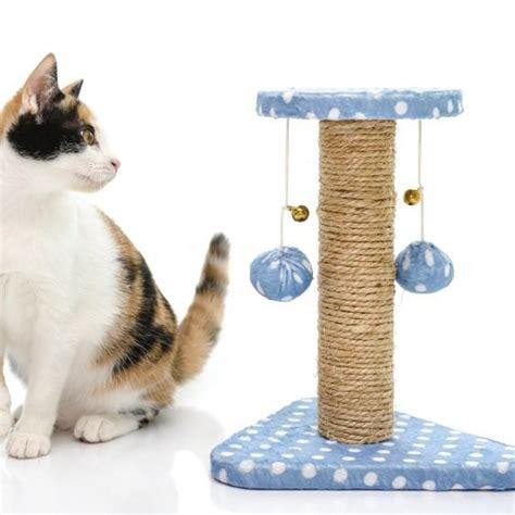 Enseñar a un gato a usar el rascador   ExpertoAnimal