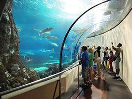 Entrada al Aquarium de Barcelona | Salou Área / Costa ...