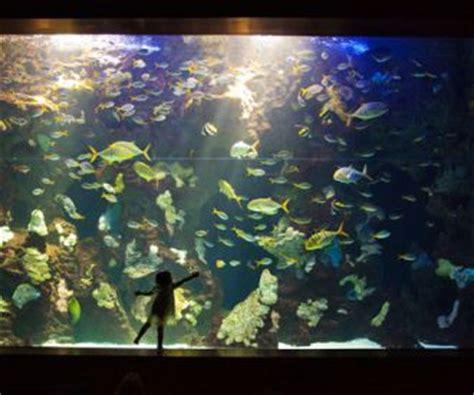 Entradas Aquarium Donostia-San Sebastián. Taquilla.com