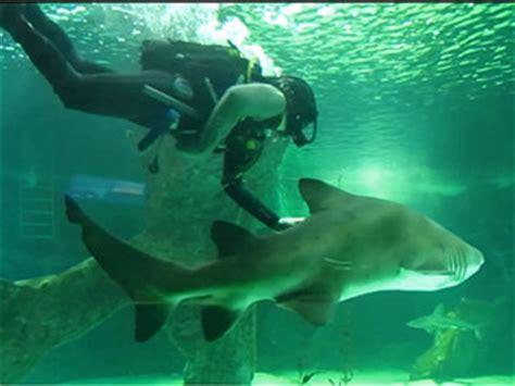 Entradas Zoo Aquarium de Madrid – Parque de animales