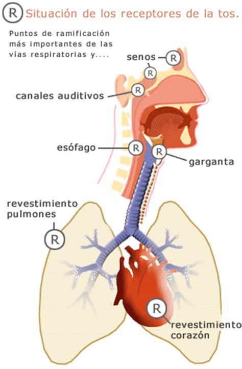 ENTRE RESFRIADOS Y TRANCAZOS I : La tos | Farmacia Calamocha