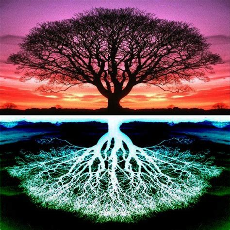 Epitome: Tree of Life
