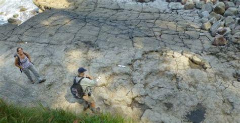 España, tierra de dinosaurios   Público