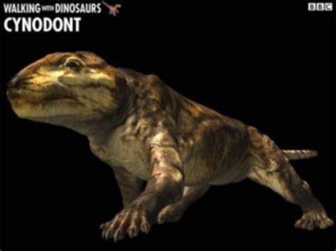 Especialistas encontram ossos de dinossauro em Santa Cruz ...