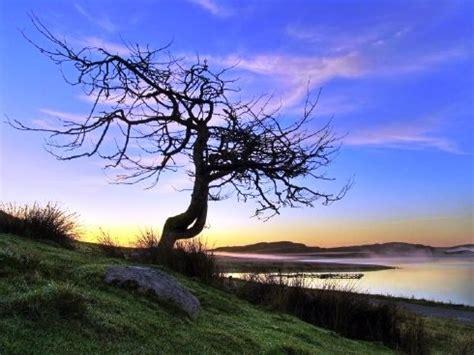 Espectaculares fotos de la naturaleza | DOGGUIE