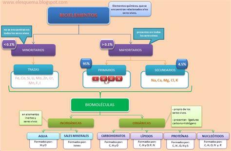 Esquemas, diagramas, gráficos y mapas conceptuales ...