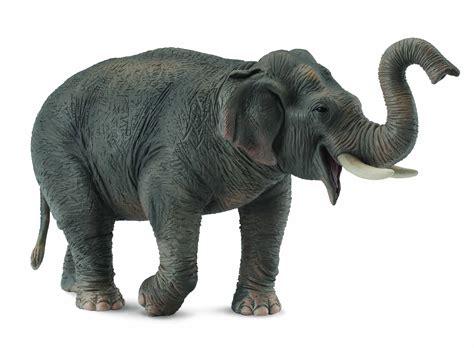 Essenza Animale Elefante   Stile Olistico Benessere Naturale