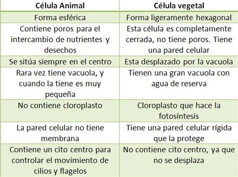 Estructura Celular: Diferencias entre célula animal y vegetal