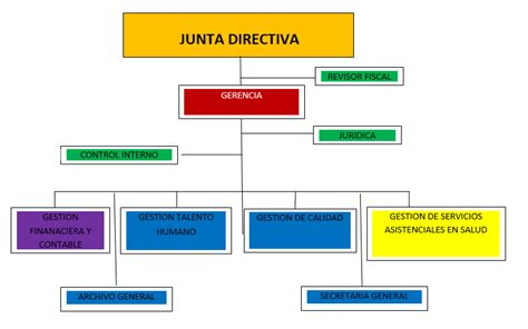 ESTRUCTURA ORGANIZACIONAL - E.S.E HOSPITAL LA DIVINA ...
