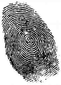 Estudiar Criminología: Salidas laborales del grado en ...