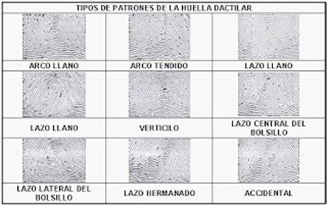 Estudiar Licenciatura en Criminalística en Puebla: ¿Qué es ...