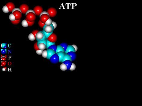 estudios quimicos: que es una molecula